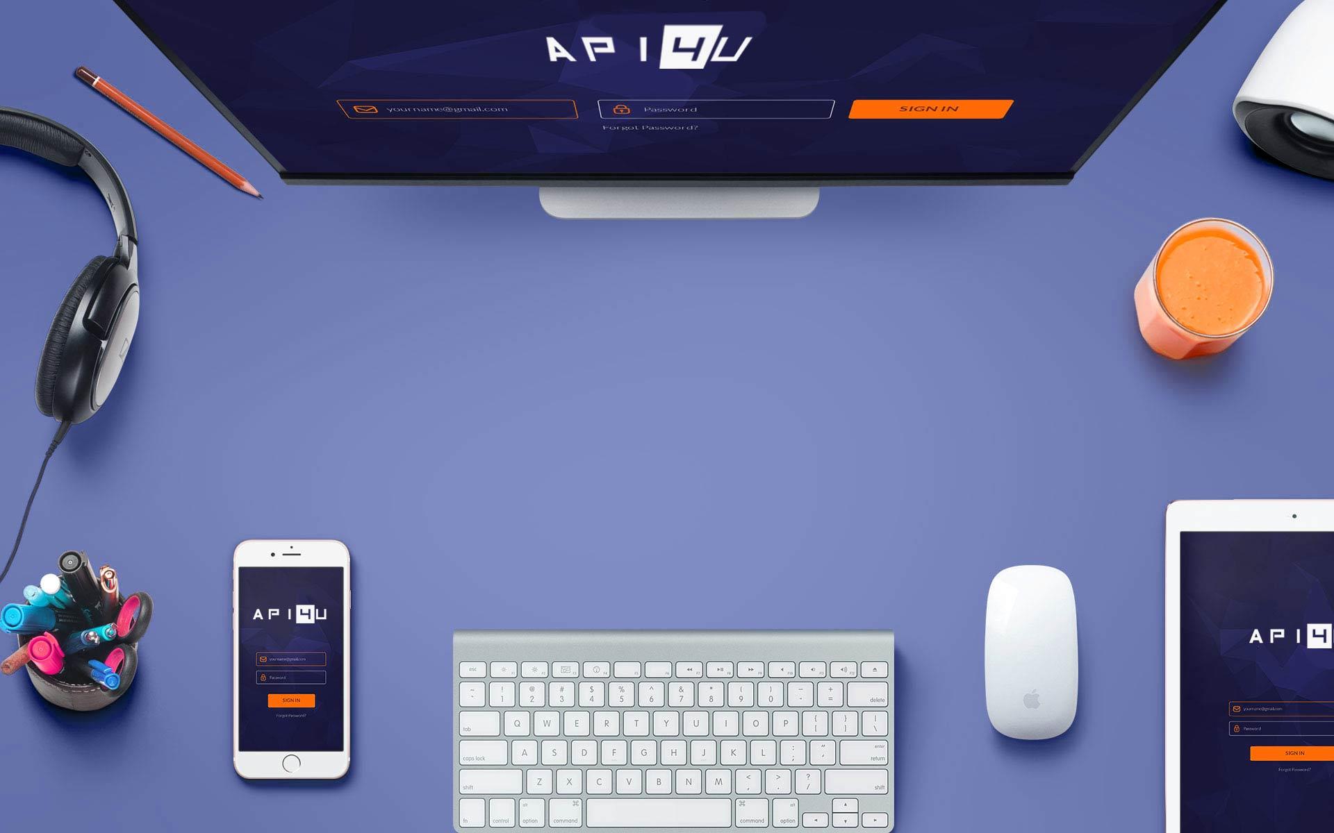API4U B2B Company